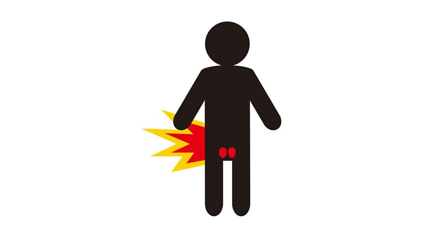 なぜ? イソフラボン様作用がある 「エクオール」が、男性の前立腺肥大やAGA予防に効果発揮