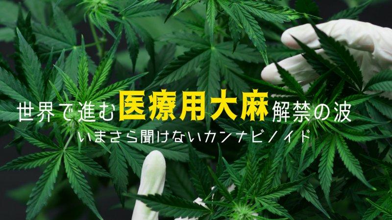 世界で進む医療用大麻解禁の波 いまさら聞けないカンナビノイドとCBD