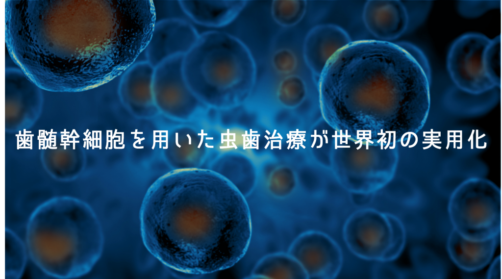 歯髄幹細胞を用いた虫歯治療が世界初の実用化