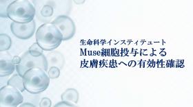生命科学インスティテュート Muse細胞投与による皮膚疾患への有効性確認